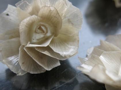 Blüte aus Fischhaut